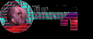 llaveV4web